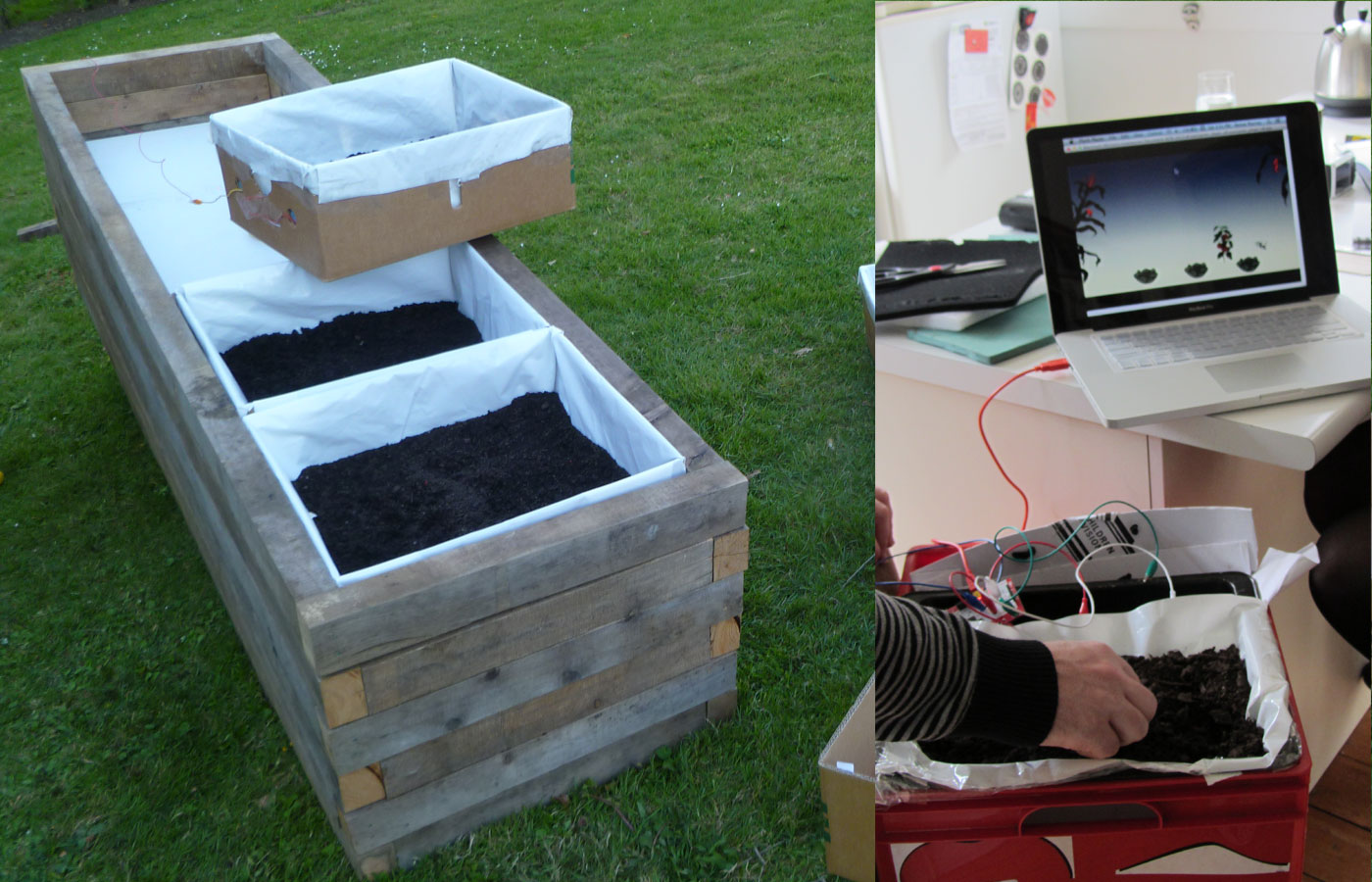 Plant The Seed build process - sensor box video test